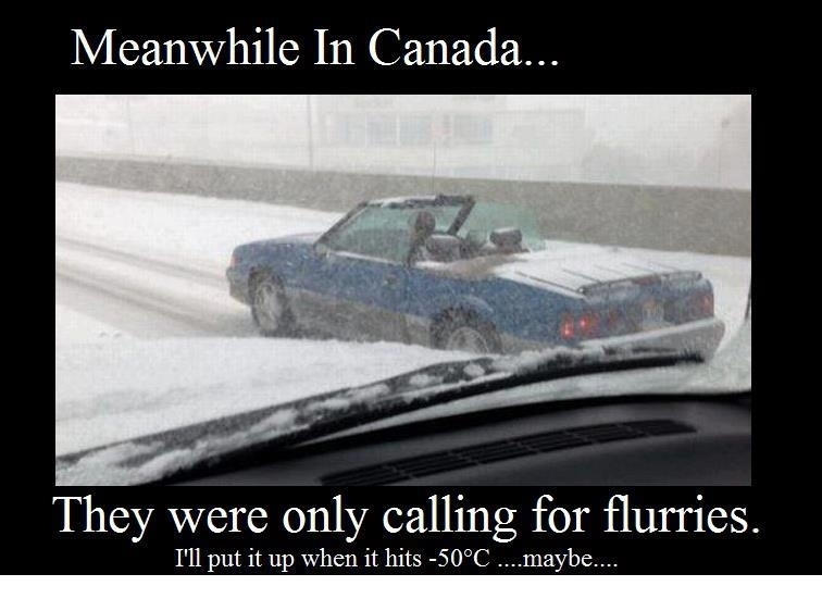 only in Canada.jpg